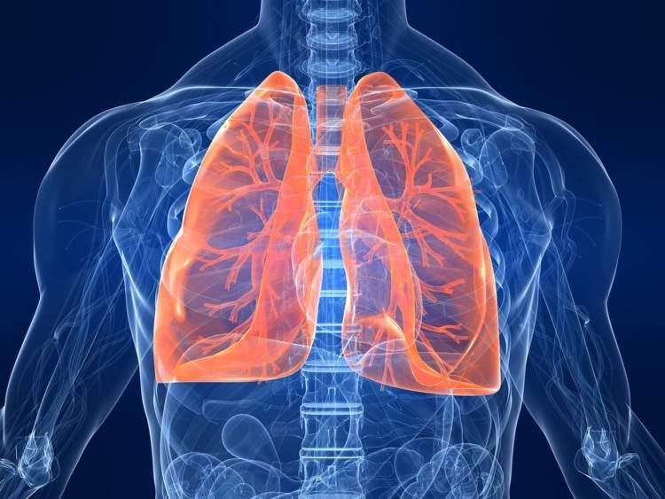 akciğer ameliyatı olduğunu görmek