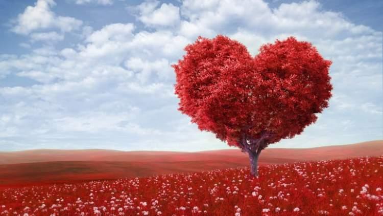 Rüyada Aşk Yaşamak