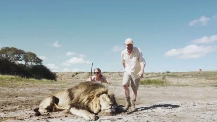 aslan öldürmek