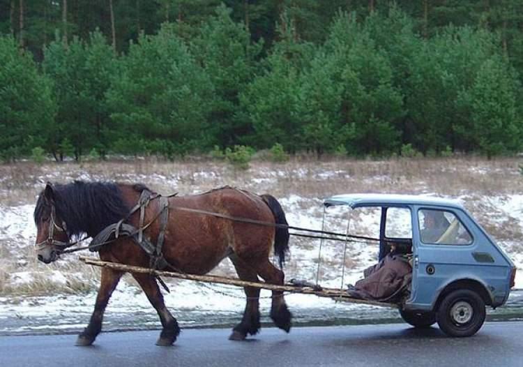 Rüyada At Arabası Binmek