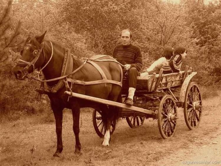 Rüyada At Arabasına Binmek