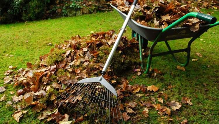bahçe temizlemek