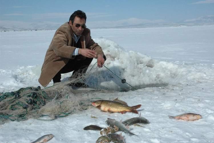 balık avladığını görmek