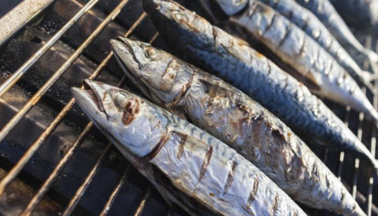 balık pişirmek
