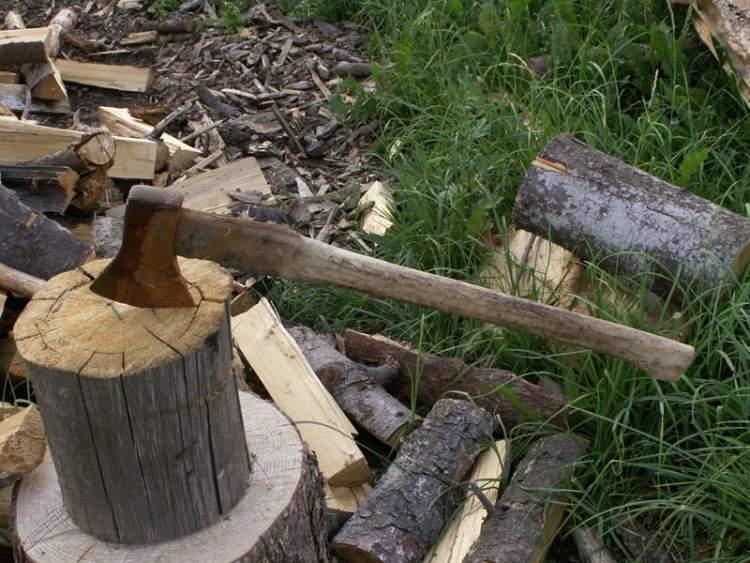 Rüyada Baltayla Odun Kesmek