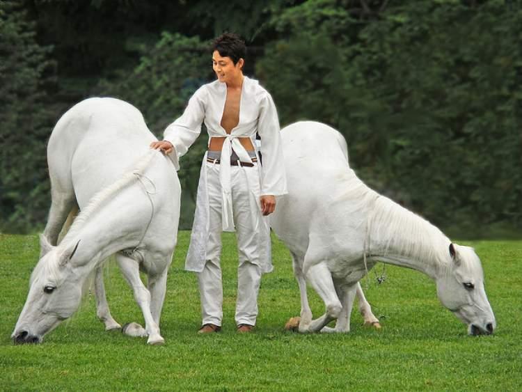 beyaz at sevmek