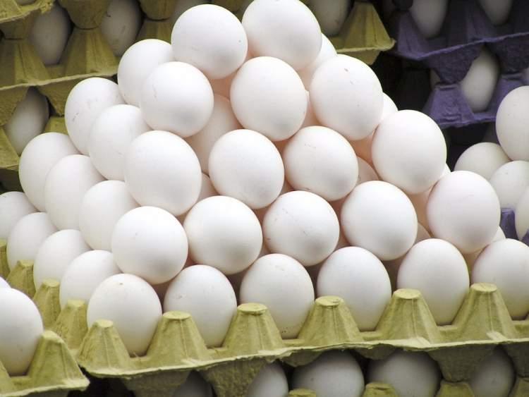 Rüyada Beyaz Tavuk Yumurtası Görmek