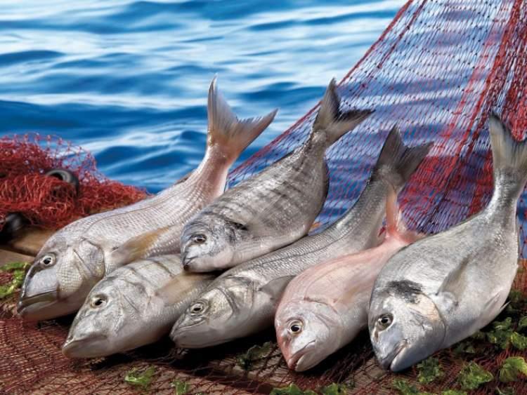 birinden balık almak