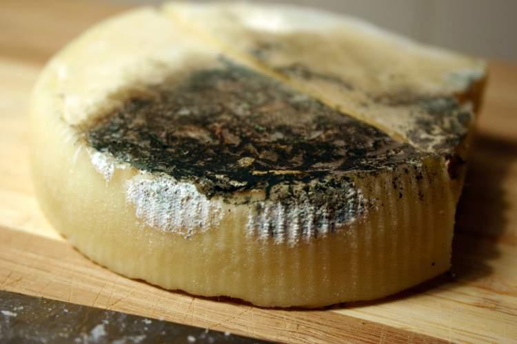 bozuk peynir görmek
