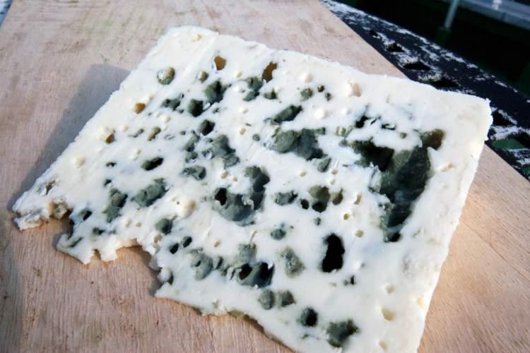 bozulmuş peynir görmek