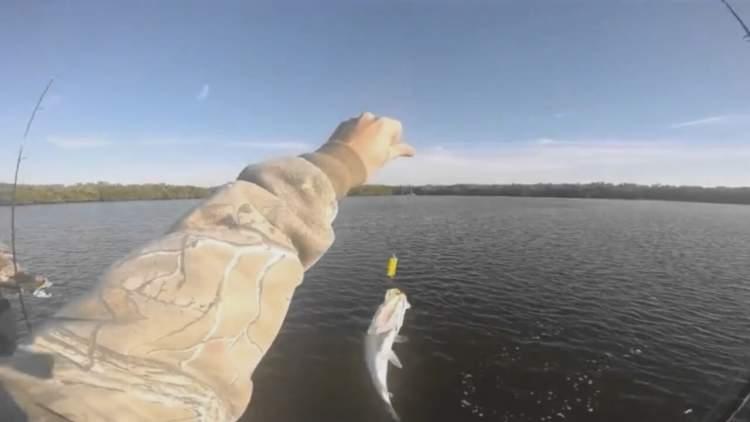 Rüyada Canlı Balık Tutmak