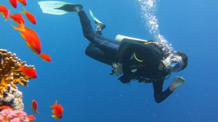 Rüyada Denizde Balıklarla Yüzmek