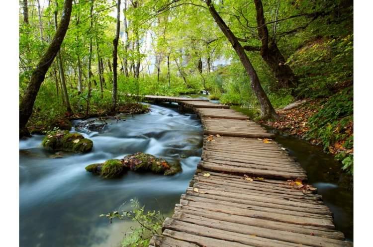 Rüyada Dere Kenarında Yürümek