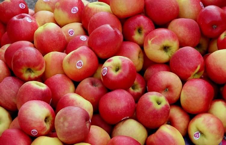 elma satmak