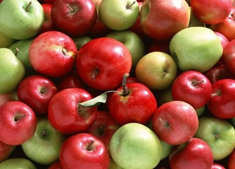 elmalar görmek