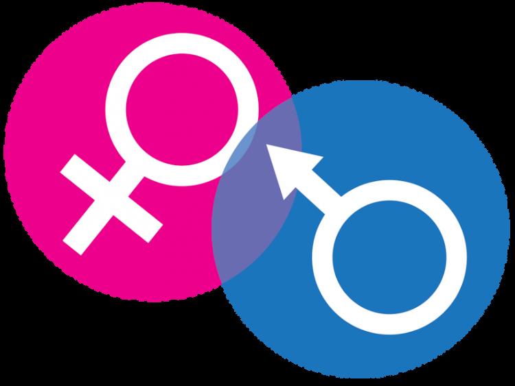 erkek cinsiyeti görmek