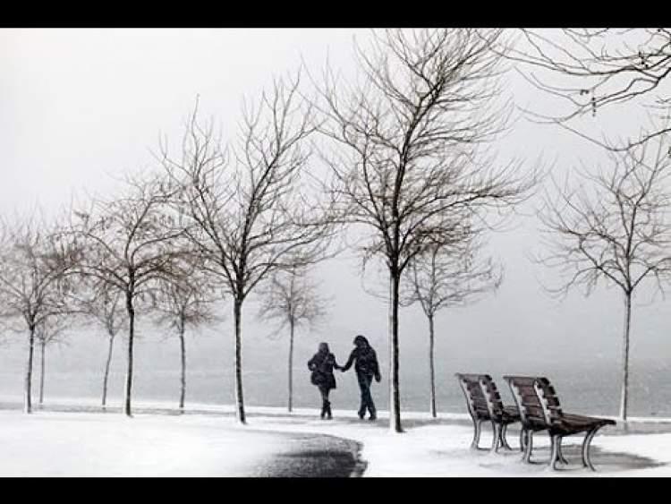 her yerde kar görmek