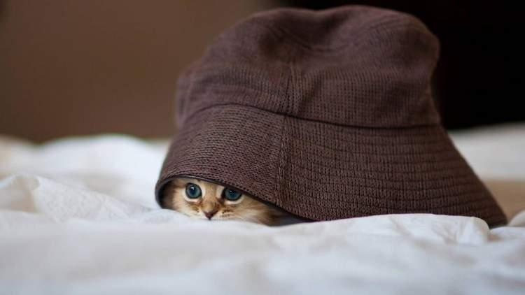 kaçmak ve saklanmak