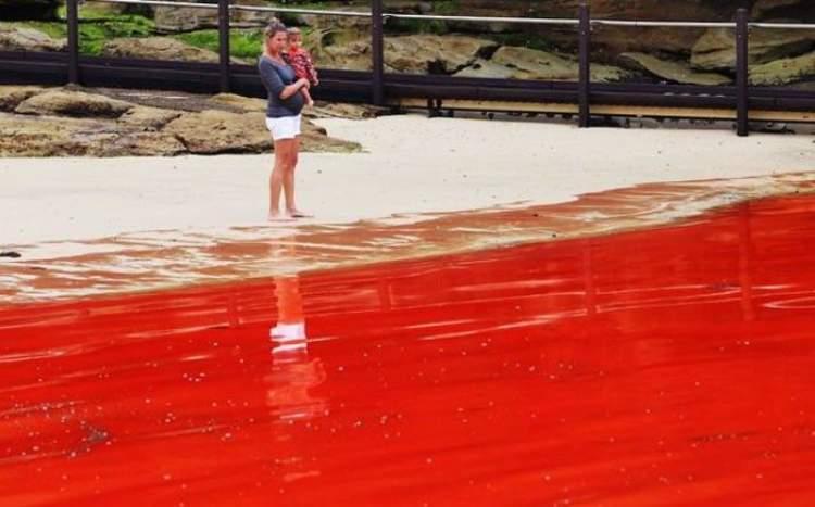 kan boşaldığını görmek