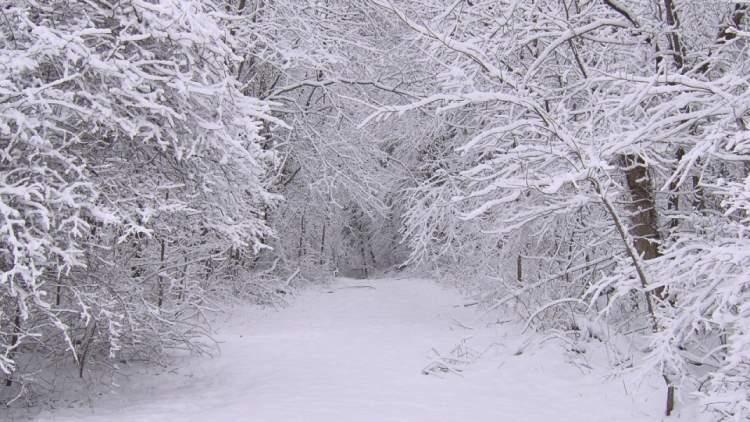 Rüyada Kar Yağması Görmek