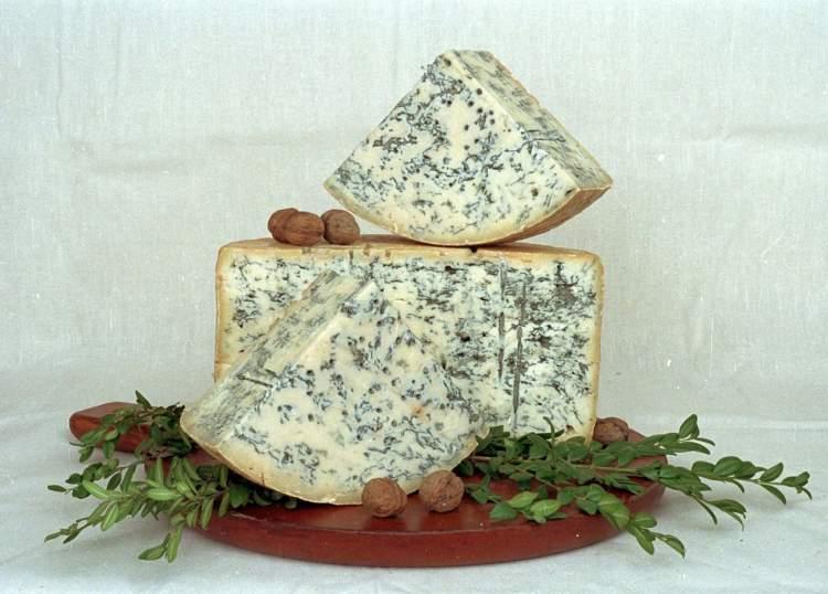 küflü peynir görmek