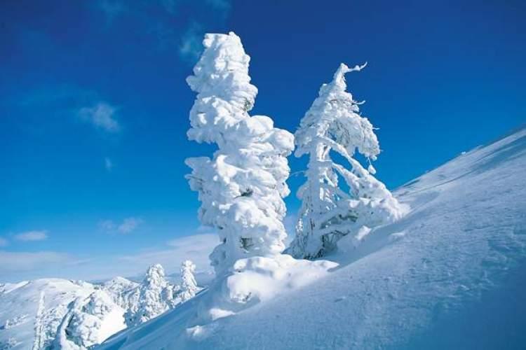 Rüyada Lapa Lapa Kar Yağdığını Görmek