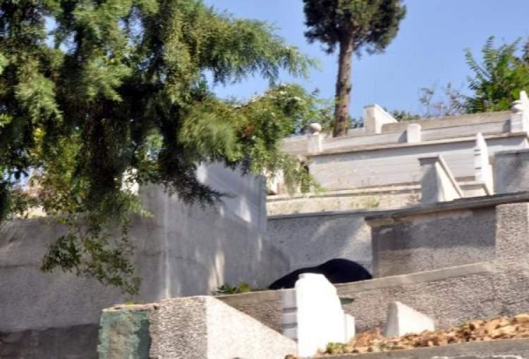 mezarlıktan kaçmak