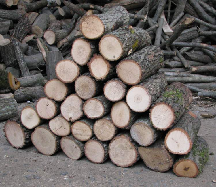 odun dizmek