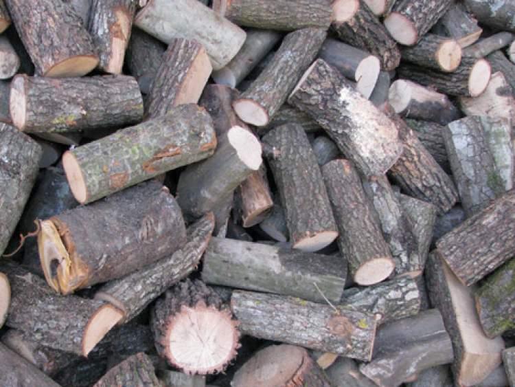odun görmek