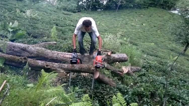 odun kesen birini görmek
