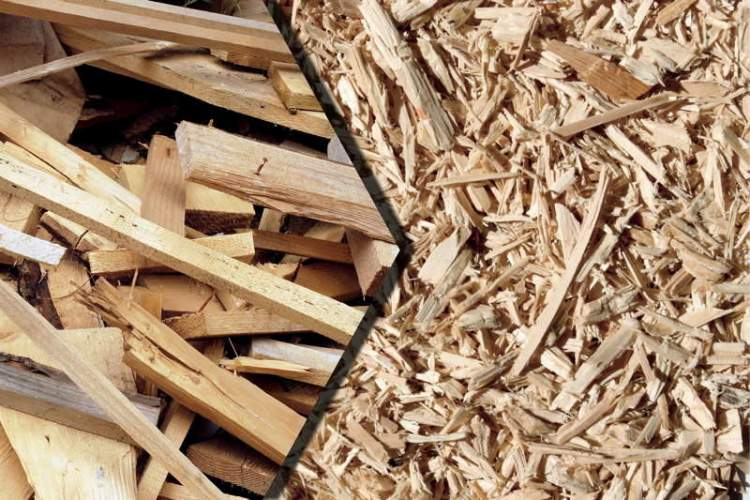 odun talaşı görmek