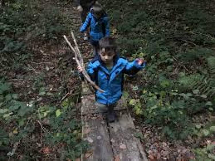 odun toplamak