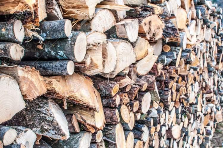 odun yığını görmek