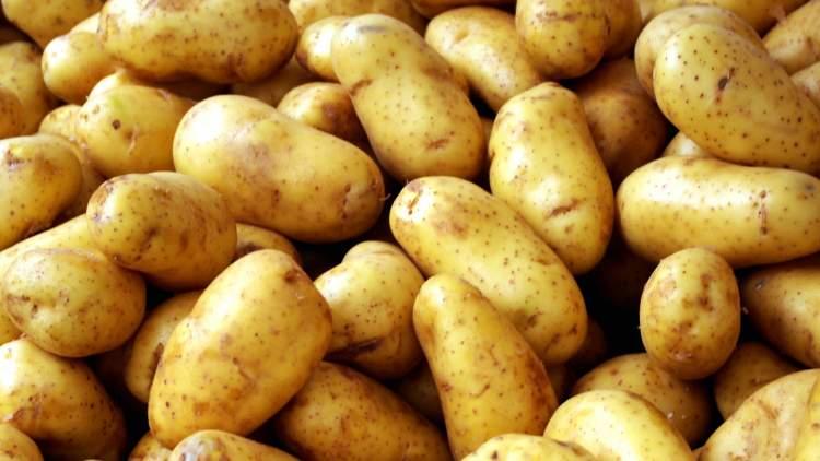 patates almak