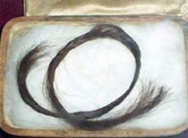 peygamber efendimizin saçını görmek
