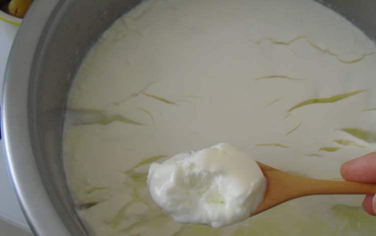 Rüyada Peynir Mayalamak