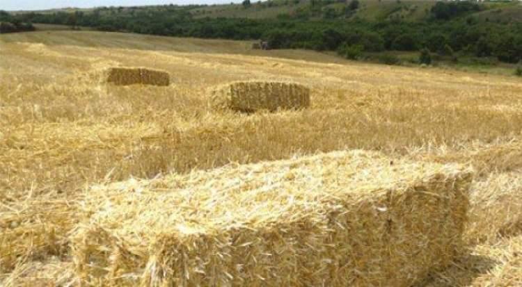 saman yığını görmek