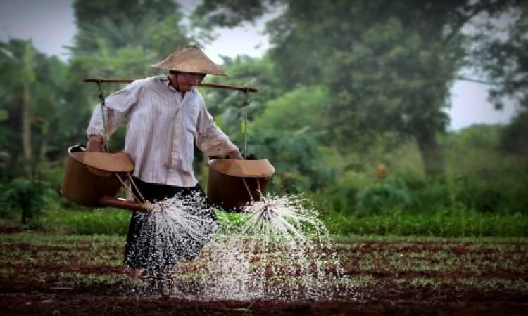 Rüyada Sebze Bahçesi Sulamak