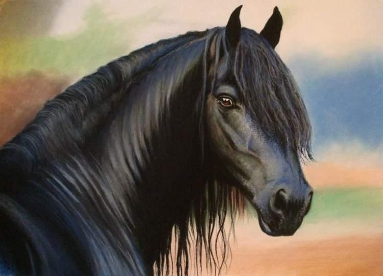 Rüyada Siyah Atlar Görmek