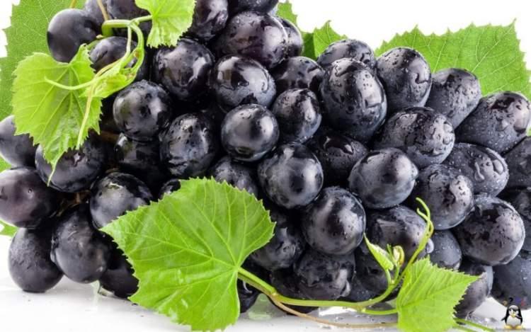 siyah üzüm yemek