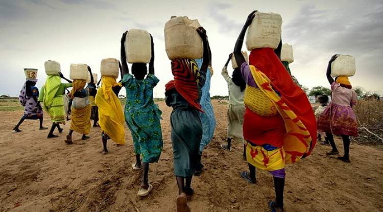 Rüyada Su Taşımak