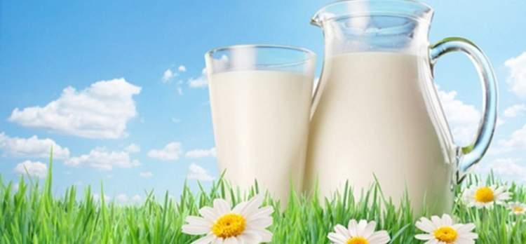 süt almak