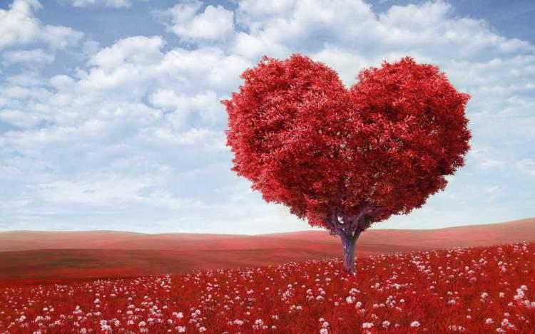 Rüyada Tanımadığı Birine Aşık Olmak