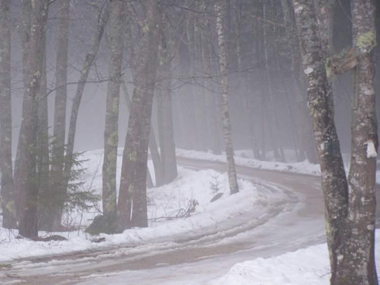 yağmurla karışık kar yağdığını görmek