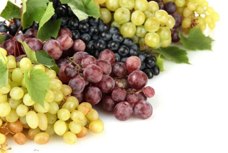 yaş üzüm yemek
