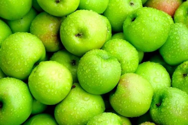 yeşil elma toplamak