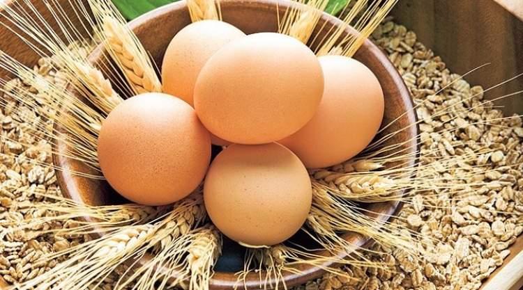 yumurta almak