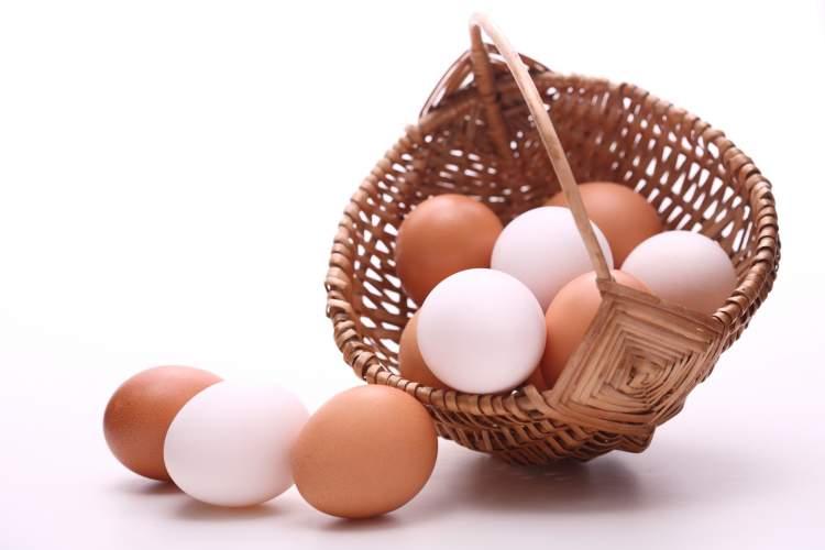 yumurta çalmak