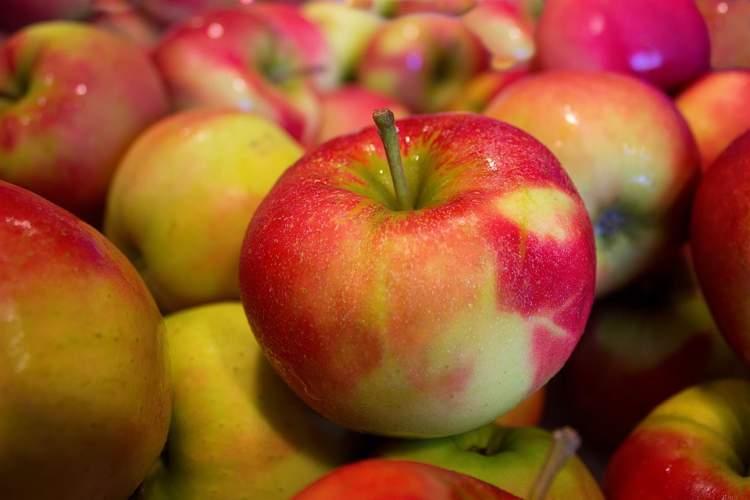 ekşi elma ağacı görmek