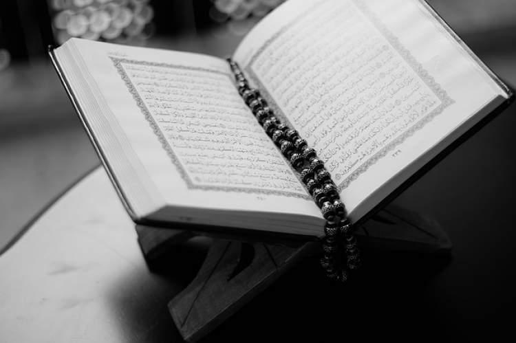 peygamber efendimizi görmek ve anlatmak